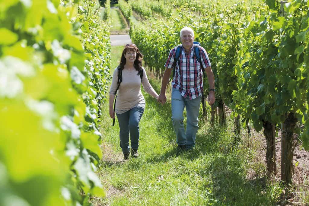 Einfach göttlich! Beim Besuch in Mittelfranken ist der Weingenuss das oberste Gebot.