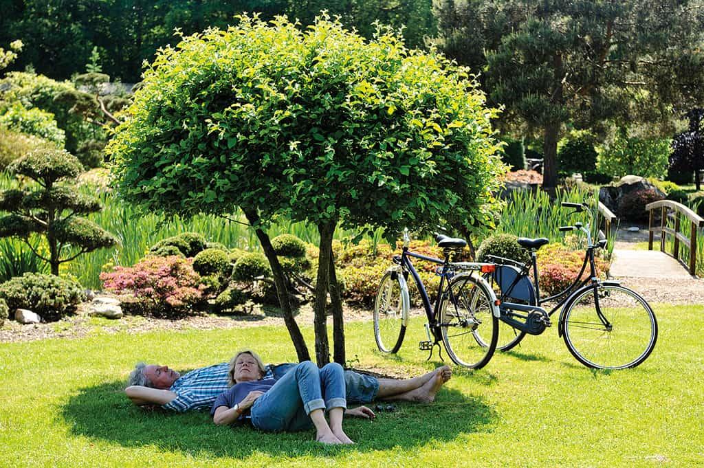pure idylle f r erholungssuchende und aktive das zwischenahner meer reiseziele deutschland. Black Bedroom Furniture Sets. Home Design Ideas
