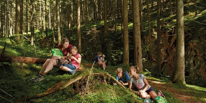 Der Nördliche Schwarzwald   Das musst Du erlebt haben…