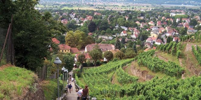 Radebeul an der Sächsischen Weinstraße