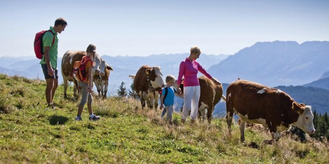 Bezauberndes Berchtesgadener Land: Unterwegs im Alpenreich von König Watzmann