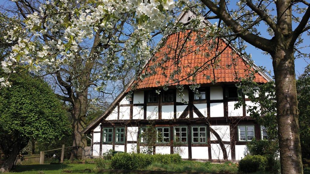 Westf. Storchenmuseum in Windheim/ Touristinformation im Rathaus Petershagen