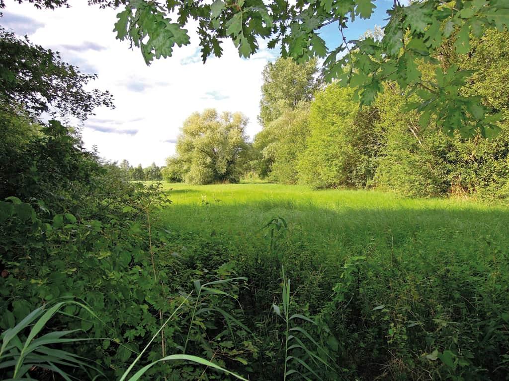 Umland von Bad Schönborn, Foto: LoKiLeCh
