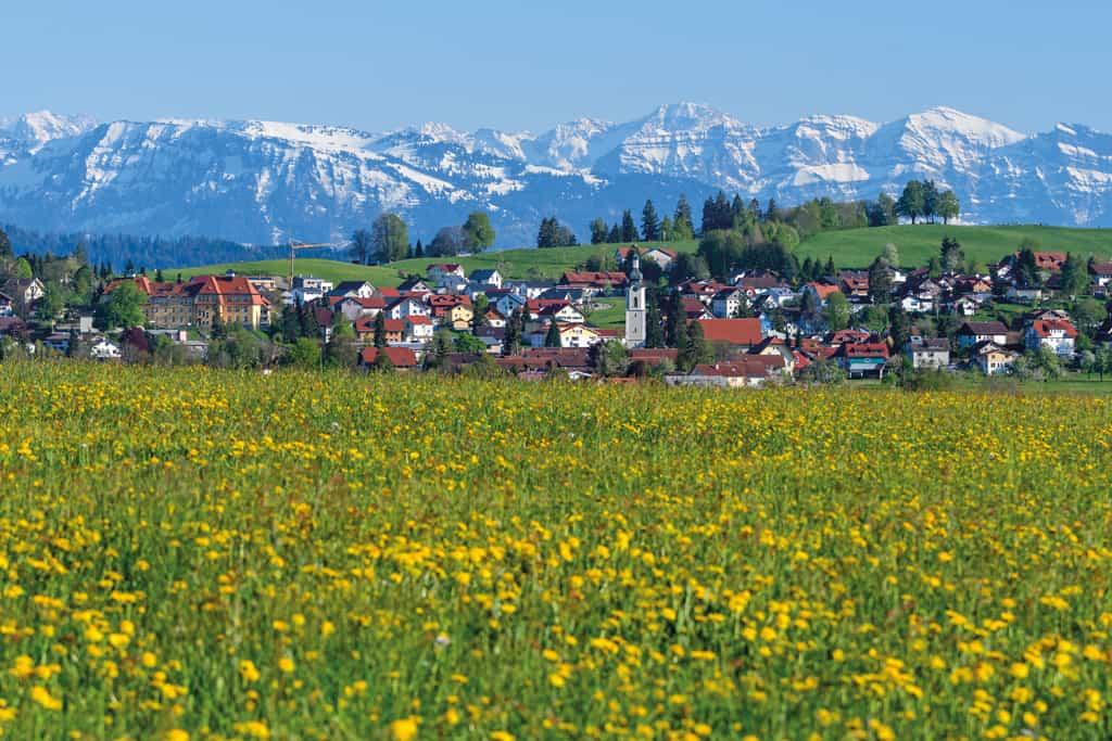 Scheidegg im Allgäu: Sonne satt, Natur pur – Urlaub ohne Ende