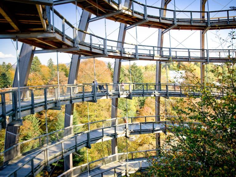 Baumwipfelpfad Bayerischer Wald Turm Von Innen, ©Erlebnis Akademie AG