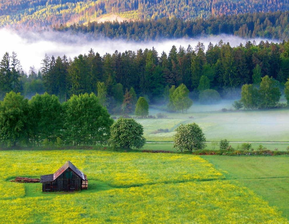 Einfach mal die Seele baumeln lassen? Im Nördlichen Schwarzwald können die Energiereserven wieder aufgefüllt werden. Neben sauberer Luft und reinem Quellwasser trägt auch der Blick auf die einzigartige Landschaft zur Entspannung bei. (Foto: epr/Tourismus GmbH Nördlicher Schwarzwald)